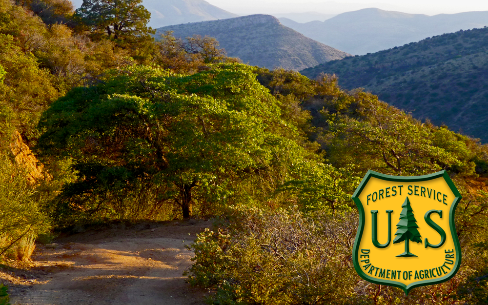 Picture of the Tonto National forest and the U.S. Forest Service Logo